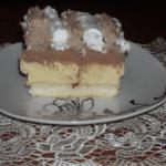ledene puding kocke Sandra Stojiljkovic Cvetkovic png