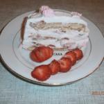 slag torta sa jagodama Ivana Pesic png
