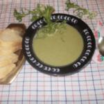 corba od rukole Ljiljana Stankovic recepti i kuvar online