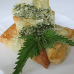 pita od kukuruznih kora sa koprivom Snezana Kitanovic recepti i kuvar online