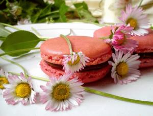 Macarons by Kristina Gašpar | Recepti & Kuvar Online - Šta da kuvam danas? 1