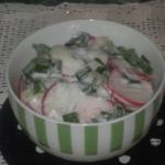 Salata sa rotkvicama i mladim lukom - Adilja Hodža - Recepti i Kuvar online