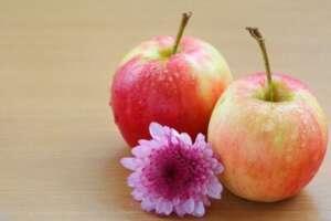 6 razloga zašto ne mršavite iako držite dijetu - Recepti i Kuvar online