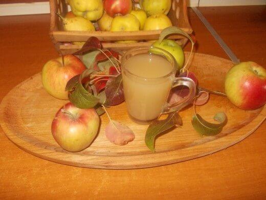 Domaće jabukovo sirće - Ljiljana Stanković - Recepti i Kuvar online