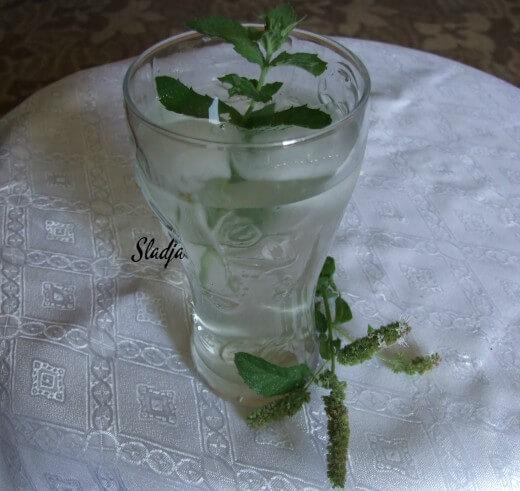 Domaći sok od nane - Slađana Šćekić - Recepti i Kuvar online