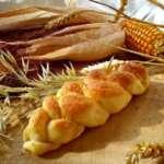 Kako napraviti slavski kolač i peciva - Kristina Gašpar - Recepti i Kuvar online