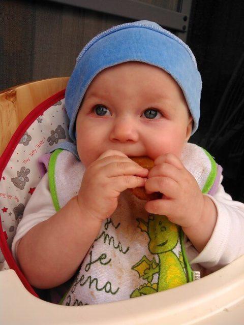 Zdravi biskviti za bebe - Ana Vuletić - Lena uživa u biskvitima - Recepti i Kuvar online