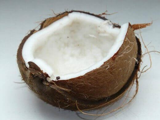 Kokos u bebinoj ishrani - Ana Vuletić - Recepti i Kuvar online - Pixabay