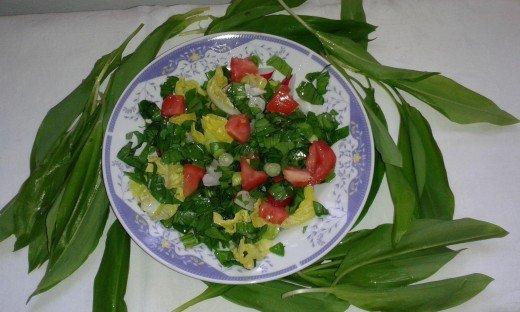 Sremuš - medveđa salata - Biljana Mladenović - Recepti i Kuvar online