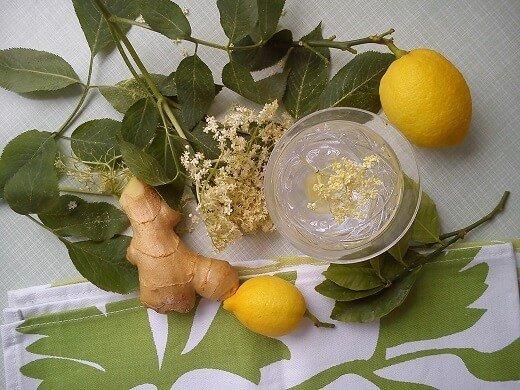 Začinite sok od zove đumbirom - Kristina Gašpar - Recepti i Kuvar online