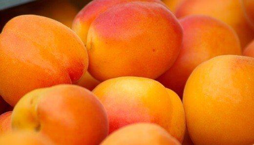 Kajsije - TOP 5 najpregledanijih recepata - Recepti i Kuvar online