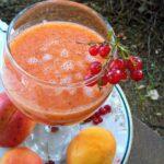 gusti sok od kajsija sa ribizlama Kristina Gaspar 03
