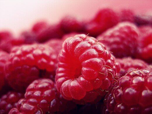 Maline recepti - TOP 5 najpregledanijih recepata - Recepti i Kuvar online - Pixabay