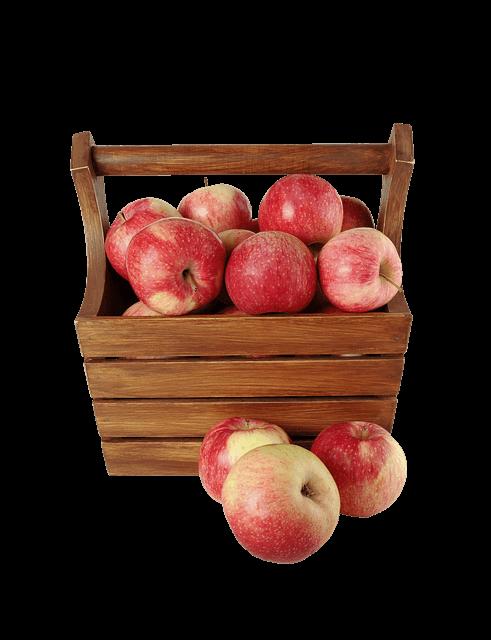 Sok od jabuka iz 1901. godine - Pixabay