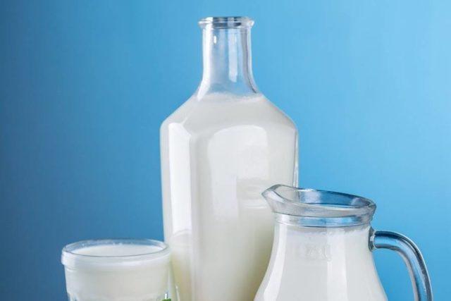 mlecni proizvodi mleko jogurt kefir scaled
