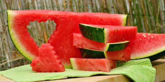Da li je lubenica zdrava? - foto Image by congerdesign from Pixabay