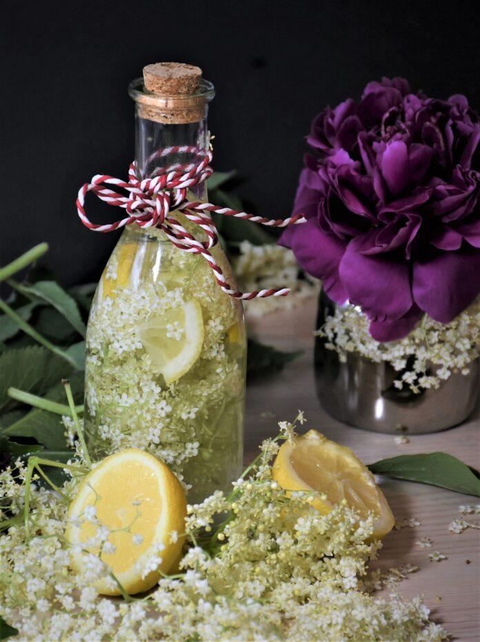 Sok od zove recept - foto ilustracija Image by RitaE from Pixabay
